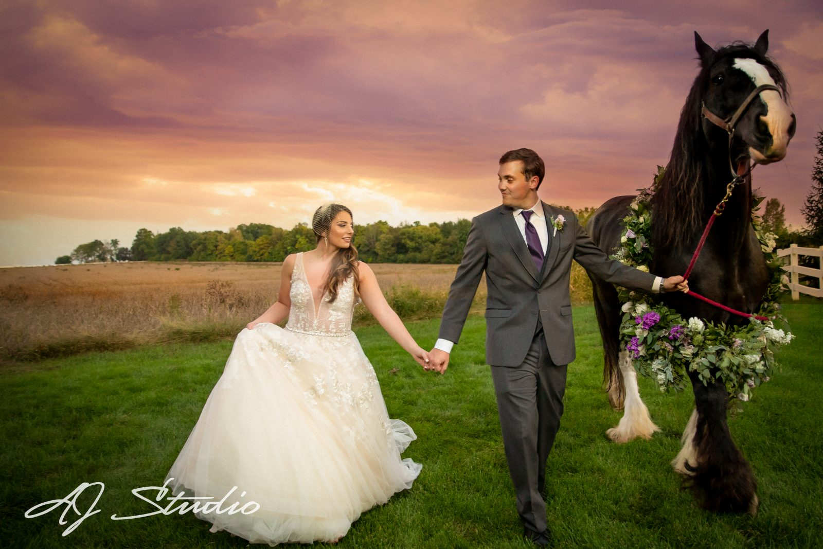 bride and groom with horse at sunset